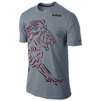 Nike LeBron Black Lion T-Shirt - Men's -  LeBron James - Grey / Purple