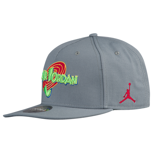 193b186e3864 ... new zealand jordan retro 11 space jam snapback 3a354 0a2c3