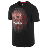 Nike Lebron Lion T-Shirt - Men's -  LeBron James - Black / Red