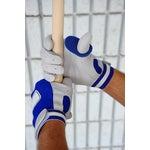 PROHITTER Batting Aid