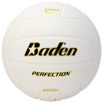 Baden Team Perfection Leather Volleyball