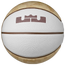 Nike LeBron XIV Playground Basketball - Men's
