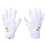 Under Armour Motive 20 Softball Batting Gloves - Women's