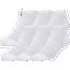 CSG 6 Pack No-Show Socks - Men's