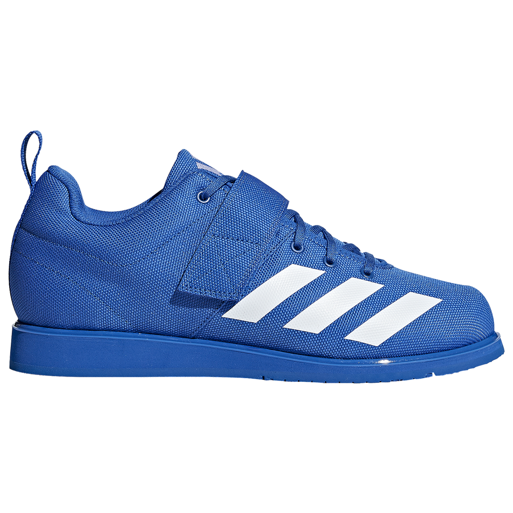 adidas Powerlift 4 - Mens / Active Blue/Footwear White