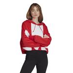 adidas Originals Adicolor Big Trefoil Crop Hoodie - Women's