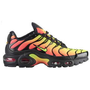 Nike Air Max Plus multicolor