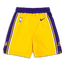 Nike Nba Icon Replica Lal - Maternelle Shorts