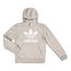adidas Adicolor - Grade School Hoodies