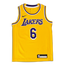 Nike Nba Los Angeles Lakers Lebron James - Grade School Vests