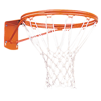 Porter Team Outdoor Double Rim Goal