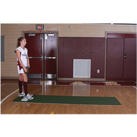 ProMounds Softball Pitching Mat