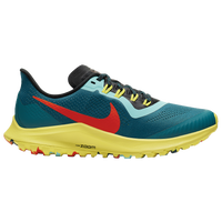 sports shoes 37453 a7c61 Nike Pegasus Shoes | Champs Sports